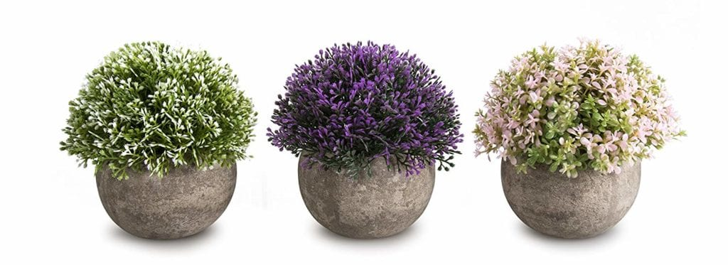 Potted plants | Spring Decor Ideas for Your Home